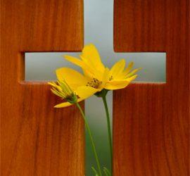 wood-flower_klein