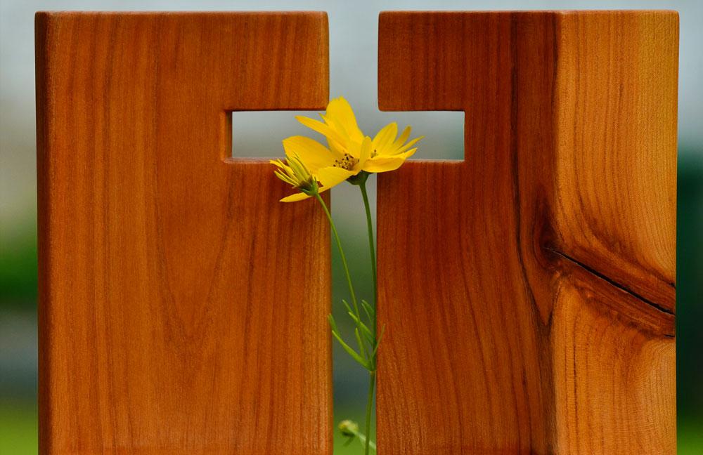 wood-flower